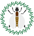 insect in ring vector image