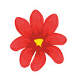 isolated cute flowerws vector image