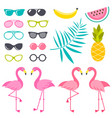 set of flamingo birds sunglasses and fruits for vector image