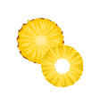flat icon of two round slices of ripe vector image vector image