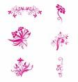 Pink flower Floral vector image