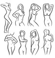 young female body outline silhouettes vector image