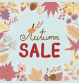 autumn sale banner on leaves fall background vector image