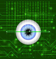 biometric identification system for eye vector image vector image