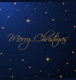christmas starry background vector image vector image