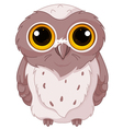 Cute owlet vector image vector image