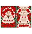 rose flower greeting card for spring season design vector image vector image