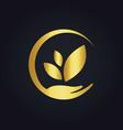 save ecology bio nature gold logo vector image vector image