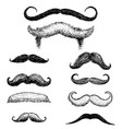 set mustache and funny beard men hipster vector image