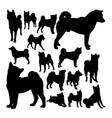 shiba inu dog animal silhouettes vector image vector image