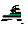 state new york military support american flag vector image vector image