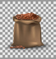 coffee beans in brown burlap bag on the vector image vector image