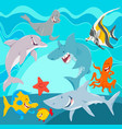 marine animals cartoon characters underwater vector image