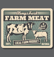 meat farm with cow and sheep animals vector image vector image