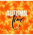 Autumn time seasonal banner design Fall leaf vector image vector image