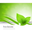 Background with leaves vector image vector image