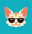 cat emotional head of cute vector image