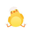 cute bachicken sitting with shell in its head vector image vector image