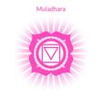 muladhara vector image vector image
