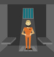 prisoner flat of prison vector image
