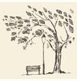 Romantic tree with bench lantern drawn sketch vector image vector image