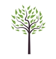 single Tree icon vector image vector image