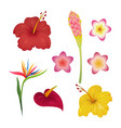 tropical flower set tropic flowers fashion print vector image