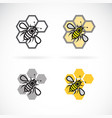 bee and honeycomb design on white background vector image vector image