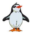 cartoon image of penguin vector image vector image