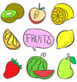collection stock various fruit doodles vector image