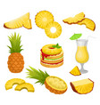flat set of cut and whole pineapples vector image vector image