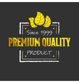 Golden premium quality logotype vector image