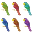 Parrots on a pole set vector image