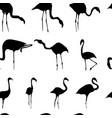 silhouette flamingos seamless pattern black vector image vector image
