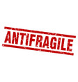 square grunge red antifragile stamp vector image vector image