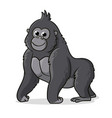 cute gray gorilla is standing on a white vector image