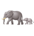 cute mother and baby elephant vector image vector image