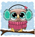 greeting christmas card wih owl on a branch vector image