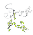 inscription spring vector image vector image