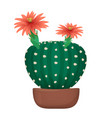 isolated cartoon cactus in pot vector image