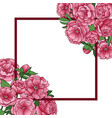 peonies mock up vector image vector image