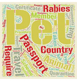 Pet Passport and PETS 1 text background wordcloud vector image vector image