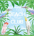 slogan beach club birds and leaves blue background vector image