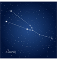 Taurus constellation zodiac vector image