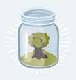 young plant growing in the glass jars vector image vector image