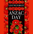 anzac day red poppy flowers vector image vector image