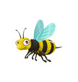 cartoon bee icon insect with striped body vector image