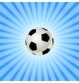 soccer balls icon vector image vector image