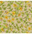 tutsan pattern vector image