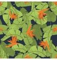 Tropical Flower Print vector image